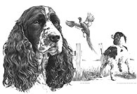 'Past-day Dreaming' Springer Spaniel fine art print by Mike Sibley