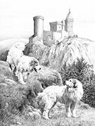 'Pyrenean Pals' Pyrenean Mountain Dog (Great Pyrenees) fine art print by Mike Sibley
