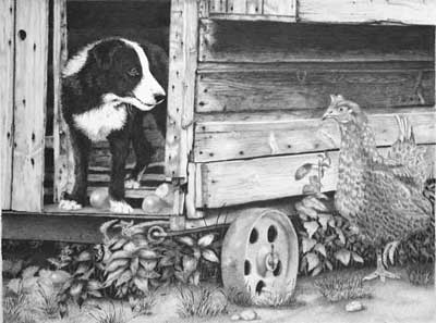 Grahame's completed Border Collie Pup and Hen graphite pencil drawing