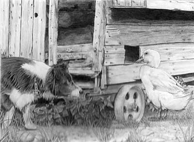 Mark's Border Collie and Duck graphite pencil drawing