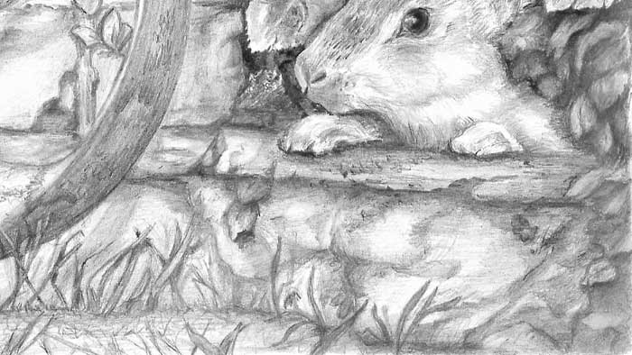 stone block beneath rabbit