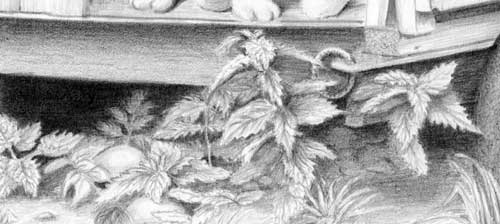 foliage and weeds detail